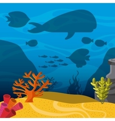 k icon Sea life design graphic vector image