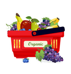shopping basket with fresh and organic fruits vector image