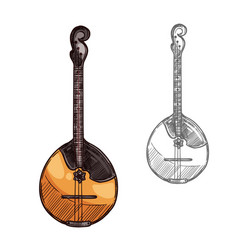 domra or mandolin sketch russian music instrument vector image