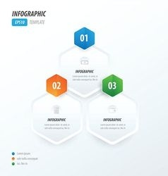 Hexagon infographic green orange blue vector image