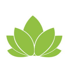 leaves nature symbol vector image