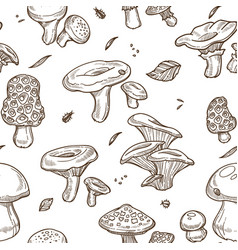 mushrooms sketch seamless pattern edible vector image
