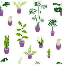 seamless pattern potted home plants vector image