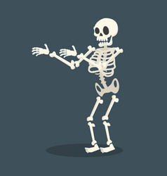 skeleton flat style vector image