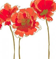 three flower of poppy vector image vector image