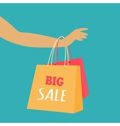 Big Sale Concept in Flat Design vector image