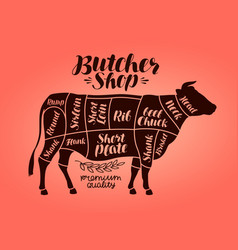 butcher shop meat cut charts beef cow steak vector image