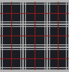 Cozy soft plaid with fringe seamless pattern vector