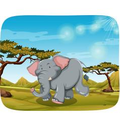 elephant in african scene vector image