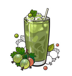 Gooseberry smoothie in sketch style isolated on vector