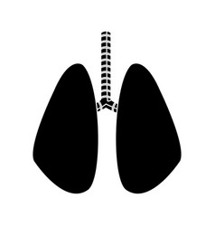 lung human anatomical health silhouette vector image