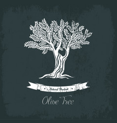 natural oil tree logo for olive grove vector image