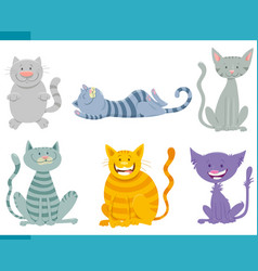 cats and kittens funny characters set vector image
