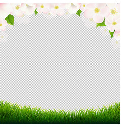 Spring poster with flowers and transparent vector