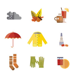 Autumn clothes set the fall tree rain hat scarf vector