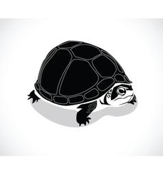 turtle B vector image vector image