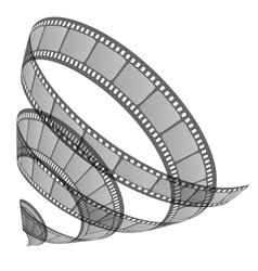 film roll vector image