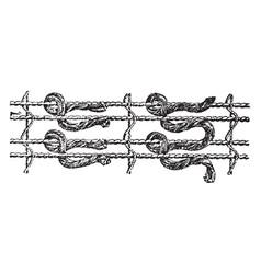 Knots used in weaving oriental rugs vintage vector