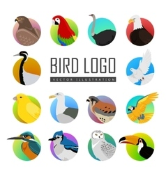 Set bird logo vector