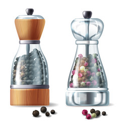 Set of two pepper mills with peppercorns vector