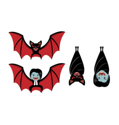 Vampire bat and dracula on white cartoon vector