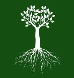 white tree with leaves on green background vector image
