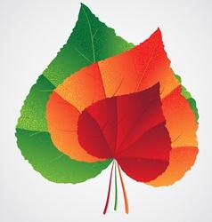 leafs heart shape vector image vector image