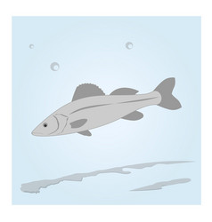 fish in the water vector image