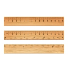 wooden ruler vector image