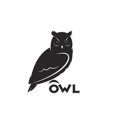 an owl design on white background bird animal vector image