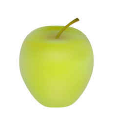 apple isolated on white background vector image