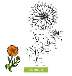 numbers game for children flower calendula vector image