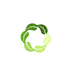 organic leaf circle logo designs inspiration vector image