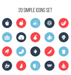 Set of 20 editable fruits icons includes symbols vector