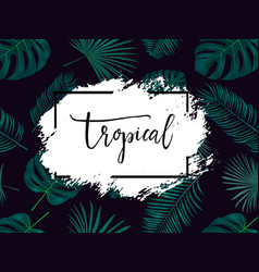 summer tropical background with exotic palm vector image