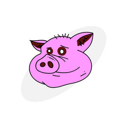 pig face vector image