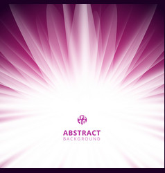abstract pink radial lines background with copy vector image