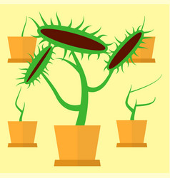 Carnivorous green plant vector