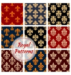 Floral royal ornament and damask patterns vector image