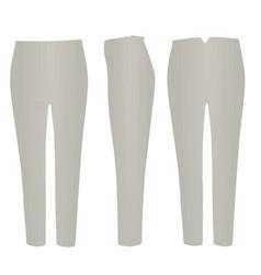Grey pants vector