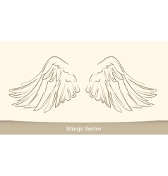 Sketch of wings on white background vector image
