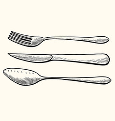 spoon and knife vector image
