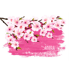 spring nature background with pink sakura branch vector image