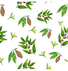 seamless pattern with coffee cacao and tea vector image vector image