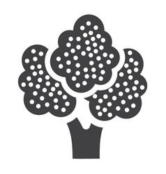 broccoli solid icon vegetable and diet vector image vector image