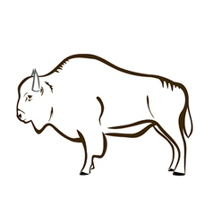 Bison buffalo vector image