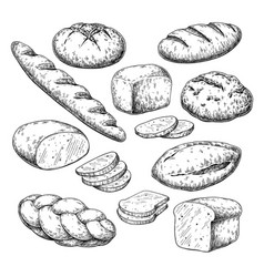 Bread drawing bakery product sketch vector
