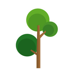 Cartoon tree natural foliage woody image vector