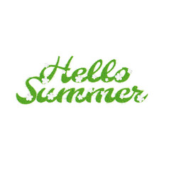 Greeting of the summer season lettering with the vector