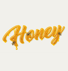 honey comb lettering vector image